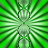 Green Dna Means Biotech Biotechnology And Gene Stock Photography