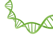 Green DNA. Stock Images