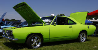 Green Dodge Stock Photo