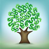 Green dollar leaves money tree Stock Images