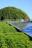 Green dome. Stock Photo