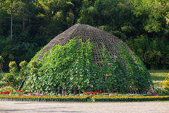 The green dome for gardening plant Stock Images