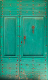 Green door Royalty Free Stock Image