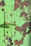 Green door Royalty Free Stock Photos