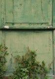 Green Door with Peeling Paint Stock Images