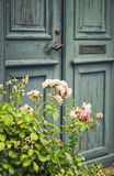 Green door with rosebush Stock Photos