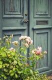 Green door with rosebush Stock Photos