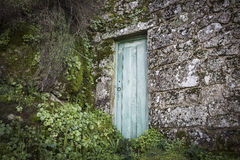 Green door on a stone with moss Stock Photo