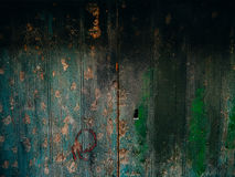 Green doors. Wood texture. Old shabby, irradiated paint Royalty Free Stock Photos