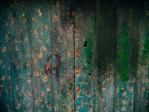 Green doors. Wood texture. Old shabby, irradiated paint Royalty Free Stock Photography