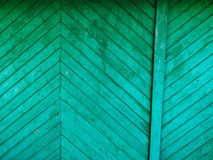 Green doors. Wood texture. Old shabby, irradiated paint Stock Image