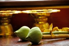 Green lotus and candle offering in Thai temple Stock Images