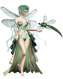 Green Dragonfly Fairy Stock Image