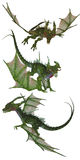 Green dragons Royalty Free Stock Photo