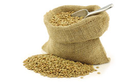 Green dried lentils in a burlap bag Royalty Free Stock Images