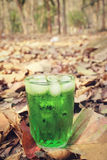 Green drinks Stock Photography