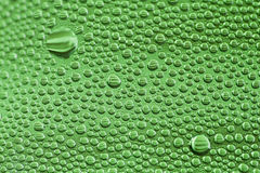 Green drops. Water drops on a green bottle Stock Photography