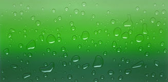 Green drops Stock Image
