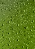 Green drops Stock Images