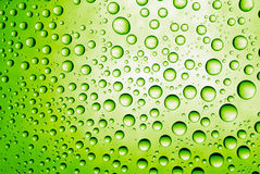 Green drops Royalty Free Stock Photography