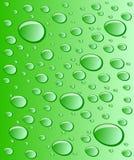 Green drops. Vector illustration. water. green drops Stock Photos