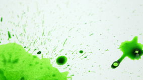 Green drops stock footage