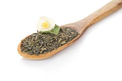 Green dry tea and jasmine flower in wooden spoon Royalty Free Stock Photo