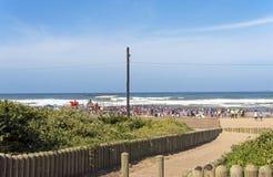 Green Dune Vegetation and People Against Blue Coastal Skyline Stock Images