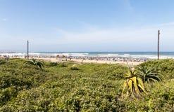 Green Dune Vegetation and People Against Blue Coastal Skyline Royalty Free Stock Photography