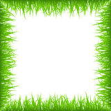 Green early spring grass frame isolated on white background. Realistic eco nature border. Royalty Free Stock Photo