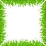 Green early spring grass frame  on white background. Realistic eco nature border. Royalty Free Stock Images