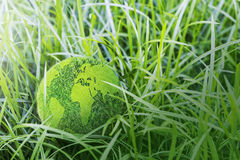 Green earth on the grass Royalty Free Stock Images
