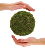 Green Earth in hands Stock Image