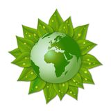 Green earth on leaves Stock Images