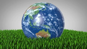 Green Earth Rotating in a patch of Grass Royalty Free Stock Photos