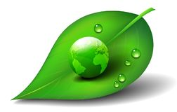 Green Earth World on Leaf Symbol Icon Symbol. Green Earth on Leaf with Water Drops Environmental Campaign or Eco Promotion, Save the World Stock Photo