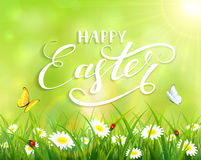 Green Easter background with grass and flowers. Green nature Easter background with a butterfly flying above the grass and flowers, lettering Happy Easter and Royalty Free Stock Image