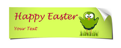 Green easter banner curled chicken Stock Photos