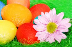 Green Easter composition. Stock Image