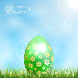 Green Easter egg in a grass Royalty Free Stock Image