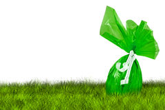 Green Easter Egg hunt. On grass on white background Royalty Free Stock Photos