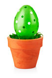 Green easter egg in the pot Royalty Free Stock Photos