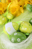 Green Easter eggs and daffodils Royalty Free Stock Image