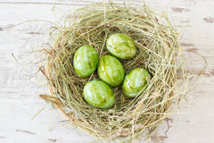 Green easter eggs in a nest Stock Images