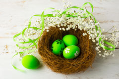 Green Easter eggs in a nest. With green satin ribbon and small white baby's breath flowers on a white wooden background, top view Royalty Free Stock Image