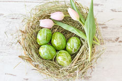 Green Easter eggs Royalty Free Stock Photo