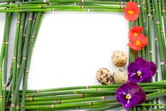 Green Easter frame Stock Image