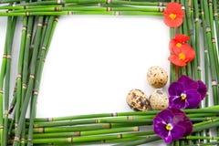 Green Easter frame Stock Image