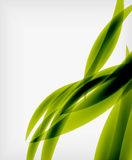 Green eco abstract line composition Royalty Free Stock Photography