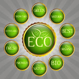 Green eco badges Stock Images